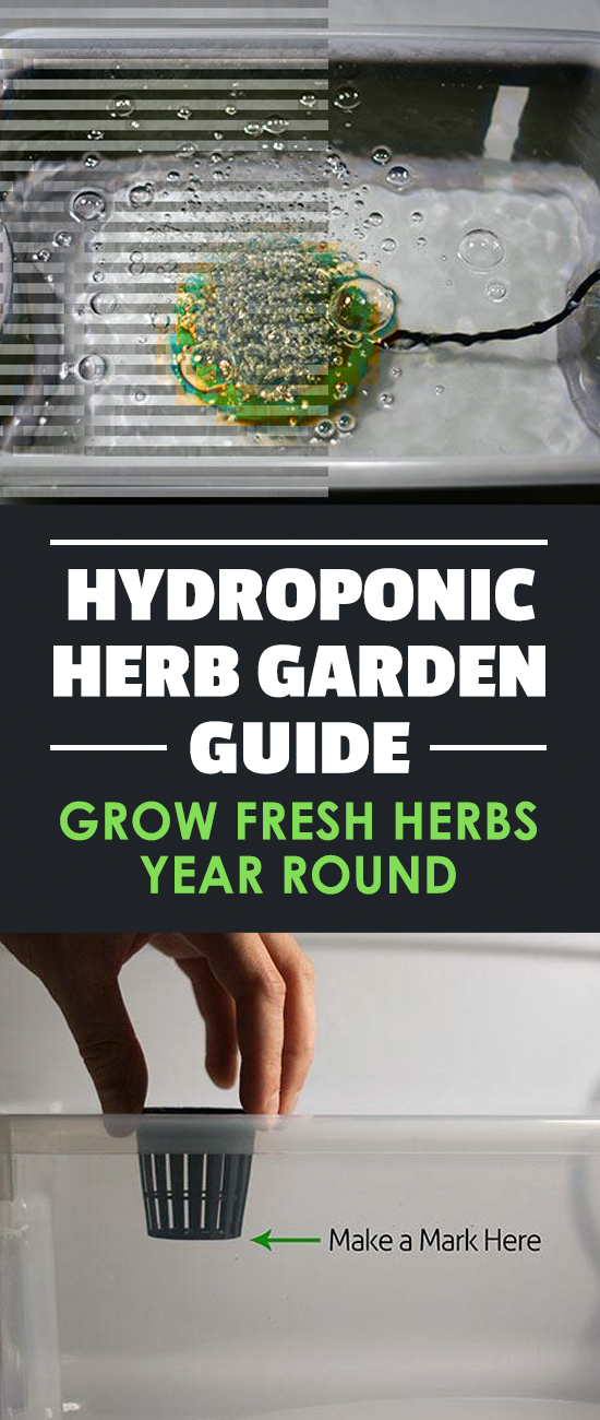 Learn how to build an indoor hydroponic herb garden. Includes a parts list and a step-by-step guide to growing fresh herbs indoors.