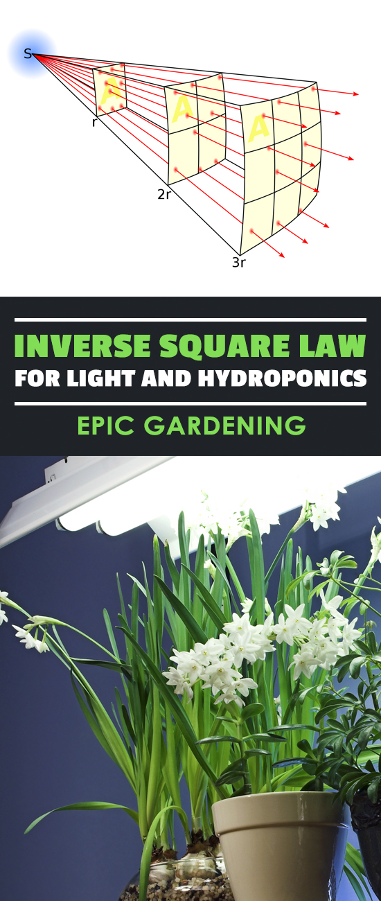 Learn why the inverse square law for light is so important in hydroponics and any type of indoor urban gardening. Without it you'll be lost!