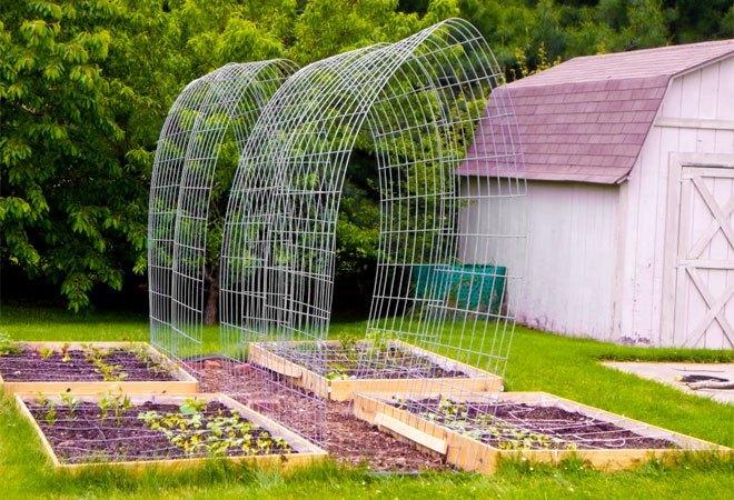 trellis walkway garden