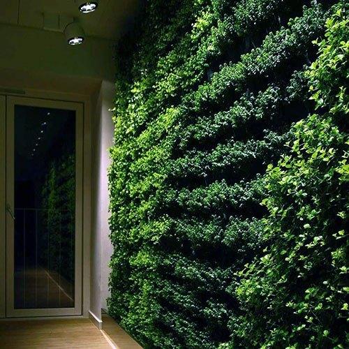 Green-Wall-6