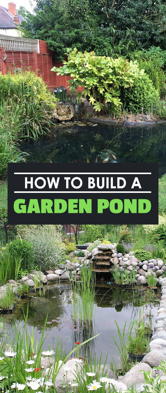 Learn How To Build A Garden Pond In This Simple Step By Step Guide. Add