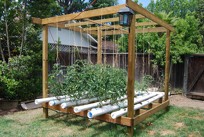 Vegetable Garden Ideas vertical vegetable gardening ideas cadagu garden idea Save
