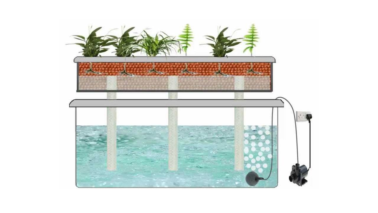 Hydroponic Systems How They Work And How To Build Your Own