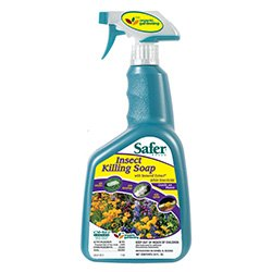 Pesticide Spray for Grasshoppers