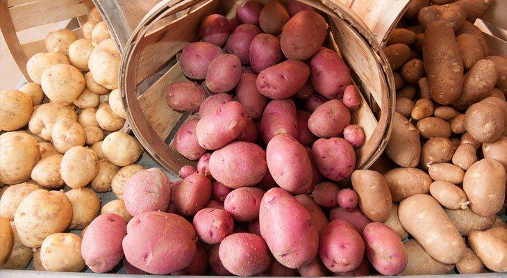 Preserving Potatoes