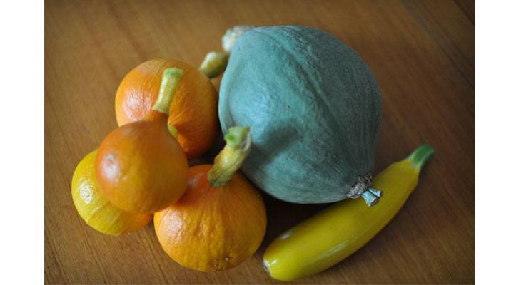 Preserving Winter Squash
