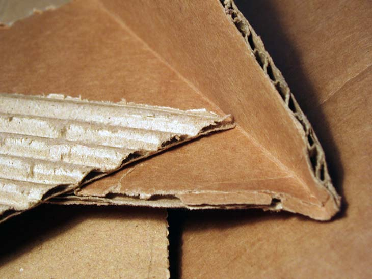 Cardboard sheets mulch