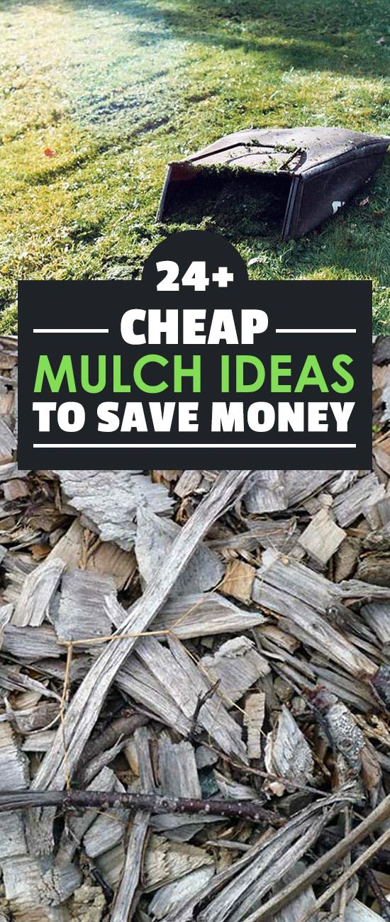 Garden Mulch Ideas building a garden walkway gravel pebbles or mulch Mulch Can Get Expensive Especially If You Buy From A Garden Center These 24