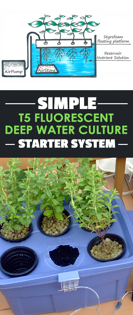 In this simple DWC system build you'll get a <$500 system that can grow 2-4 plants without any problem at all.