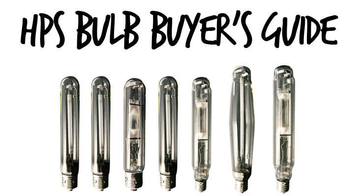 Best HPS Bulbs