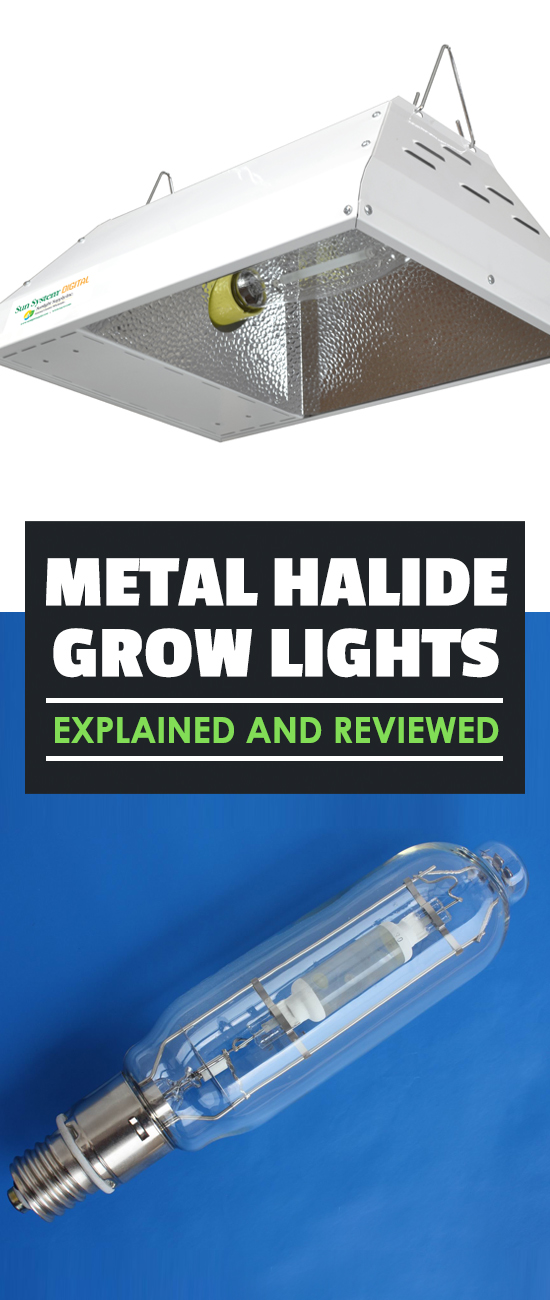 Metal halides are one of the most popular types of grow lights for gardeners...and for good reason. Learn everything you need to know about these lights.