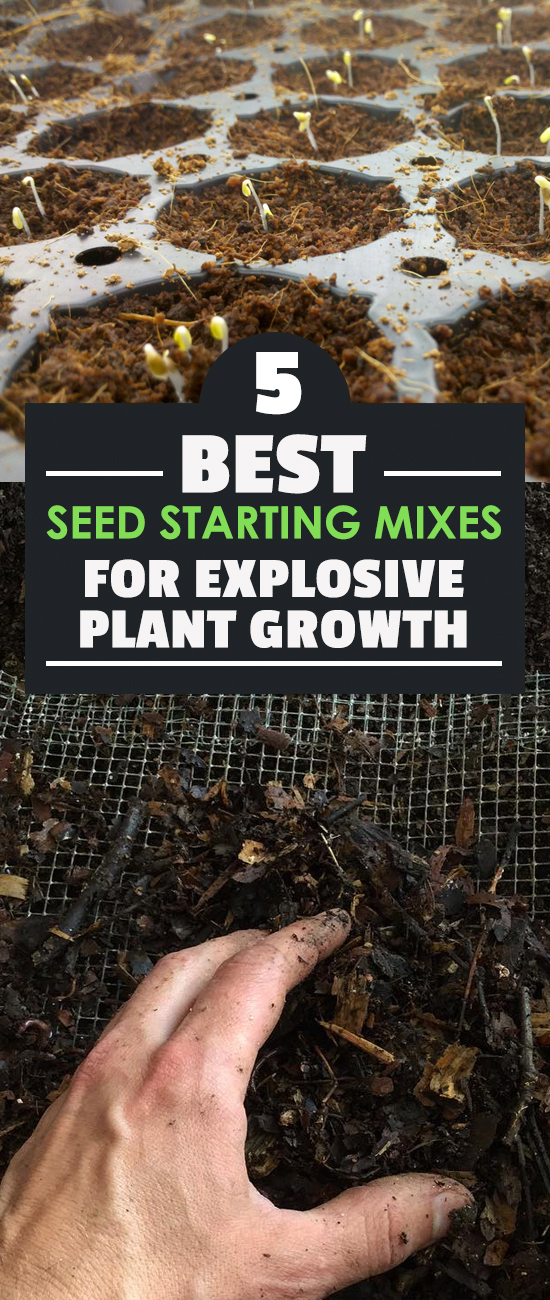 Starting seeds can be tricky, so why make it harder by choosing a bad seedling mix? In this guide we look at the best seed starting mixes you can buy.