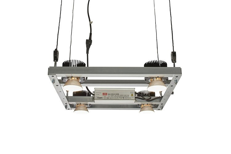 The Cob Led Grow Light Explained And Reviewed