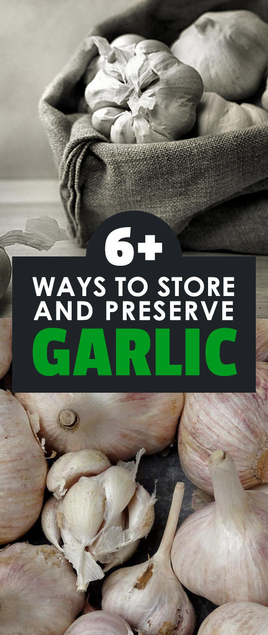 6 Different Methods For Storing Garlic